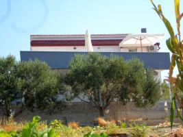 Foto 3 2 Ferienwohnungen bis zu 4 Personen in Rtina Miocici bei Zadar 150 m vom Strand Dalmatien