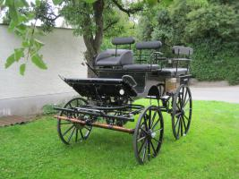 Foto 2 2-Sp. Break Wagonette, Drehkranzbremse Haflinger/Cob Top Kutsche
