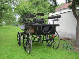 Foto 4 2-Sp. Break Wagonette, Drehkranzbremse Haflinger/Cob Top Kutsche