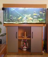 200 Liter Juwel Aquarium mit Unterschrank, Fischen und Zubehör!