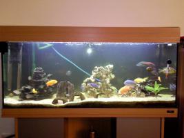 Foto 2 200 Liter Juwel Aquarium mit Unterschrank, Fischen und Zubehör!