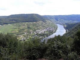 Foto 27 2019 mal in die Eifel-Mosel-Region? 2 Fewo