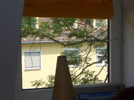Blick aus dem Fenster Ostseite