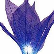 Foto 4 35x Blue Leaf Flower String Party, Patio, Wedding Light