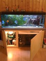 375 Liter Juwel Aquarium