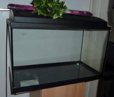 Foto 2 60 Liter Süsswasser - Aquarium mit Unterschrank und Zubehör