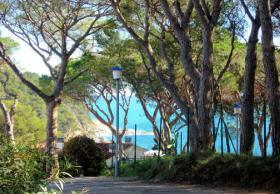 Foto 4 ☀️ Spanien Appartements günstig zu vermieten, Ferienwohnungen am Meer
