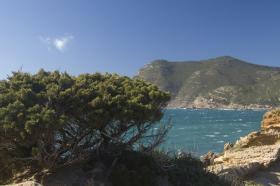 Küste bei Castelsardo