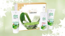 Aloe Vera natürliche Hausapotheke im Shop http://anni-lerche.de