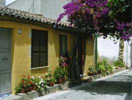 Foto 2 ANFAHRT ZUR CALA GONONE - Apartments im Aparthotel Stella dell'est