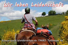 Abenteuer Wanderreiten - Pferdetrekking für Erwachsene