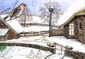 Foto 2 Adventskalender, außergewöhnlich, lehrreich, einmalig