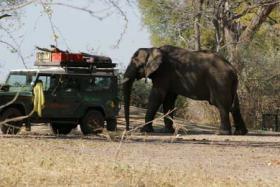 Foto 2 Afrika: Wilde Tiere, Warmes Wasser, Wunderbares Wandern