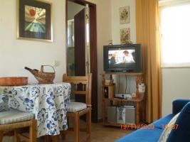 Foto 8 Algarve, Ferienwohnung Privat Preiswert, Sonnenterrasse