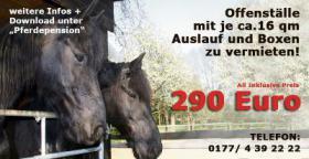 All inclusive ULTRA - Pferdepension in Box-oder Offenstallhaltung