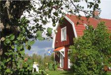 Foto 5 Angeln in Schweden 2011- 1 Woche