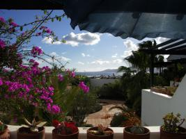 Foto 4 Apartment Tropischer Garten Lanzarote