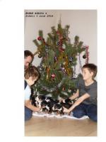 Appenzeller Sennenhund Welpen mit Stammbaum