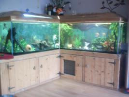 Aquarium 1000Liter plus zubehör