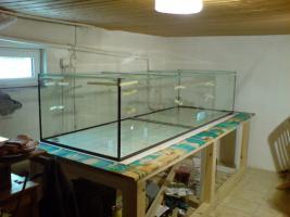 Aquarium 1400 Liter