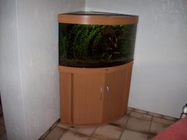 Foto 2 Aquarium 190 Liter