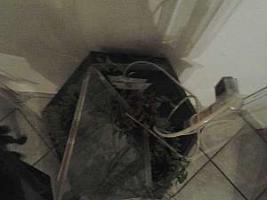 Foto 7 Aquarium Hingucker ca 80 cm Hoch (nur das Becken) mit Unterschrank