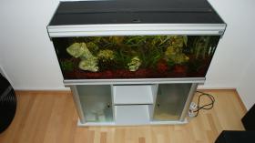 Aquarium mit Schrank Farbe Silber Grau mit oder Ohne Besatz