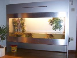 Aquarium/Terarium