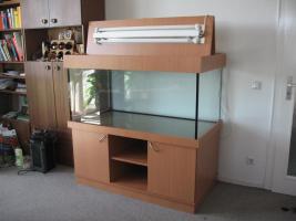 Aquarium komplett 546 Liter mit Unterschrank
