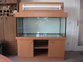 Foto 3 Aquarium komplett 546 Liter mit Unterschrank