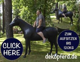 Foto 2 Aufsitzen auf Deko Pferd bzw Deko Kuh ….