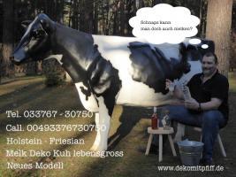 Foto 6 Aufsitzen auf Deko Pferd bzw Deko Kuh ….