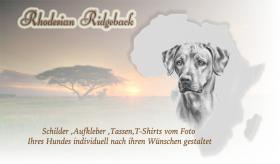 Autoaufkleber und Schilder vom Photo Ihres Tieres