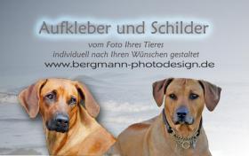 Foto 2 Autoaufkleber und Schilder vom Photo Ihres Tieres