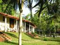 Foto 9 Ayurveda Intensiv-kur in Sri Lanka - 14 Ayurveda-kur Tage mit Vollpension & Yoga