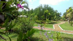 Foto 3 Ayurveda Rejuvenation-kur mit Vollpension und Yoga in Sri Lanka