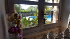 Foto 12 B & B in wunderschöner Finca bei Llombards Mallorca