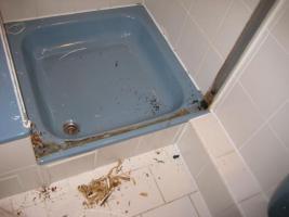 Foto 6 Bad, Dusche.Silikonfugen, Silikon, Feuchtigkeit, Fugentechnik Sanierung von Silikonfugen bzw. Fliesenfugen
