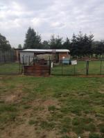 Foto 3 Bauernhof in Karenzin