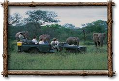 Besitzen Sie ein Stück von Afrika