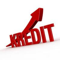 BietePrivatinvestor 2000€ BIS 400.000€