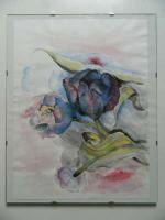 Foto 6 Bilder Gemälde