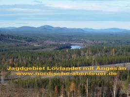 Foto 4 Blockhütte mit Kamin und Sauna in Lappland/SchwedenBagarstugan