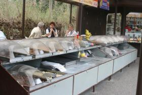 Foto 2 Bonbonverkaufsstand ca. 2x3m , komplett mit ca. 28 Edelstahlkästen