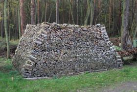 Foto 4 Brennholz 25cm gemischt, ofenfertiger Haufen mit 22,4 Raummeter