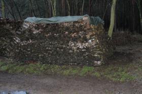 Brennholz: trockenes Ofenholz gemischt mit 25cm Länge, 22,4 RM Haufen