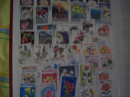 Foto 10 Briefmarkensammlung