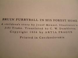Foto 3 ''Bruin Furryball in his forest home'' ein Kinderbuch.