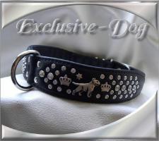 Bullterrier Halsband