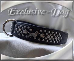 Foto 2 Bullterrier Halsband